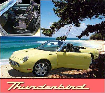 Thunderbird Seat Cover Special